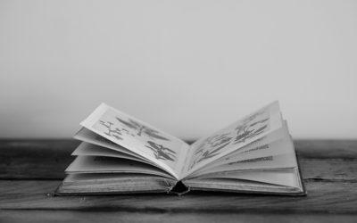 La alfabetización de datos y la comprensión de los tipos de datos